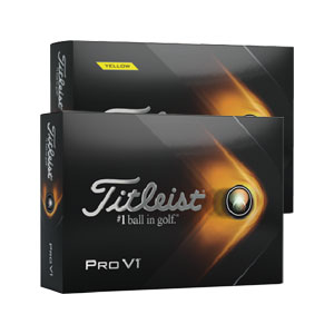 8101 Titleist New Pro V1 Golf Balls